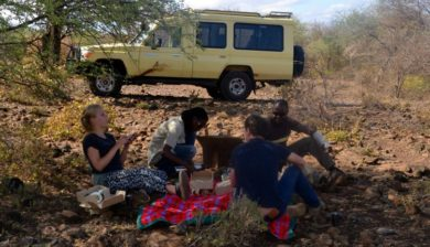 picnic safari car guests tanzania private safari