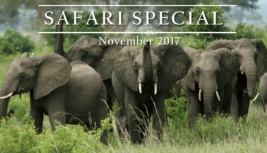 Ajabu Adventures Safari Special for November 2017