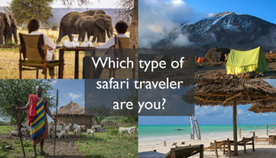 Which type of safari traveler are you