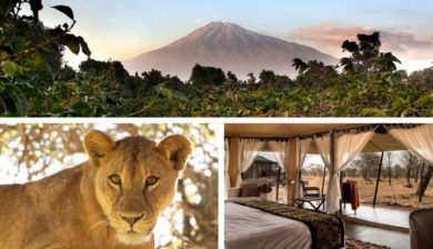 Tanzania private safari special offer 2019