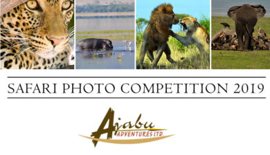 Join the Safari Photo Competition 2019 by Ajabu Adventures