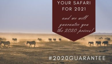 2020 guarantee: book now your private safari to Tanzaniafor 2021