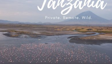 Book your private safari to Tanzania for 2021